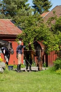 Pia Törnstrand gör iordning sin häst på stallplan bakom kontoret på Rotviks Gård